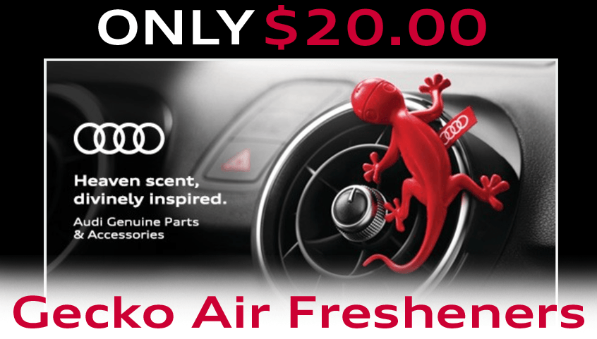 Keep It Fresh with a Gecko!